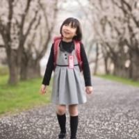 入園・入学の写真